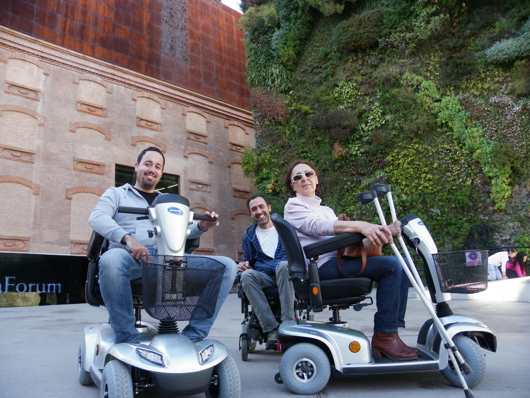 Tour privado accesible Madrid Esencial